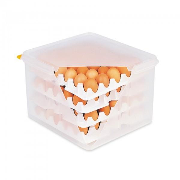 Eierbox - Polypropylen - einfach Aufbewahrung